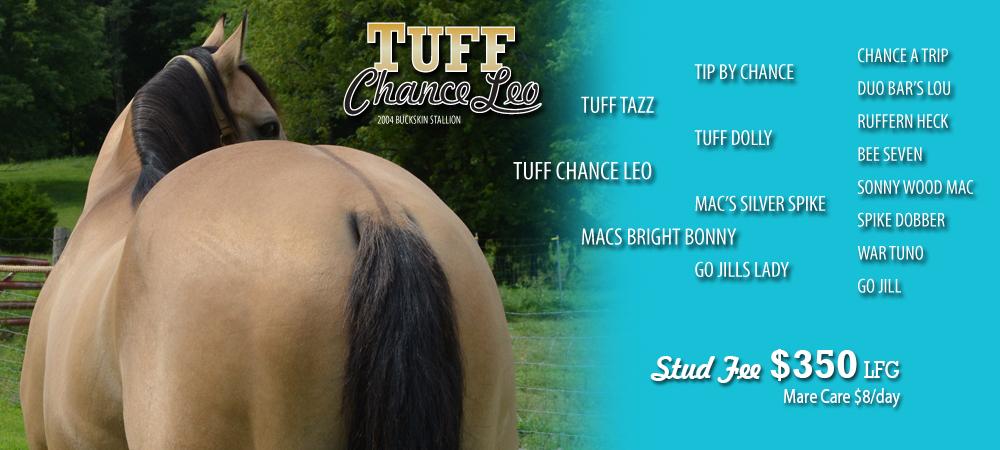 TuffChanceLeoSlideFour1